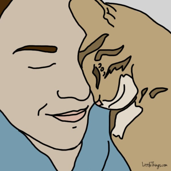 ways cats show love