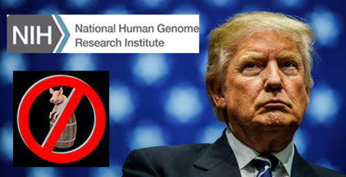Why Did Trump Want to Cut the NIH Budget? Their Human Genome Project is a Good Example – A $2.7 Billion Fraud!