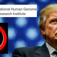 Why Did Trump Want to Cut the NIH Budget? Their Human Genome Project is a Good Example - A $2.7 Billion Fraud!